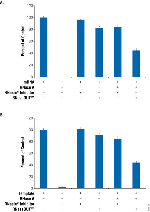 Comparison of RNasin® Ribonuclease Inhibitor and RNaseOUT™ inhibition of RNase A during in vitro translation.