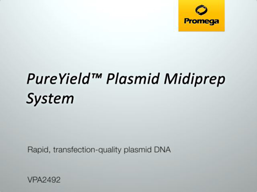 PureYield Plasmid Midiprep System Video